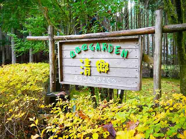 【清郷キャンプ場(BBQガーデン清郷)】場内でホタルが舞うキャンプ場「静岡市清水区」